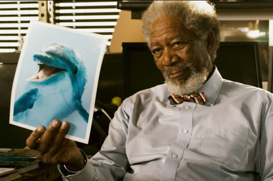 "MORGAN FREEMAN as Dr. Cameron McCarthy in Alcon Entertainment's family adventure ""DOLPHIN TALE,"" a Warner Bros. Pictures release."
